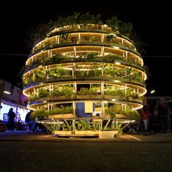 Şehirde Bitki Yetiştirme Küresi; Growroom