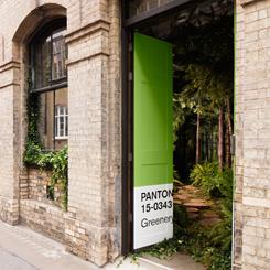 Pantone'den Greenery Temalı Airbnb Evi