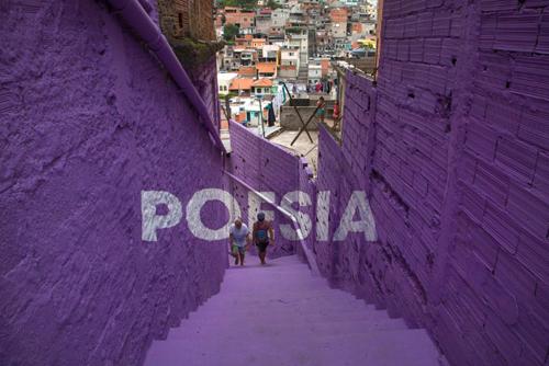 Favela Sanatının Büyüsü
