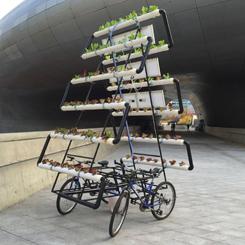 Bisiklet Üstü Çiftlik