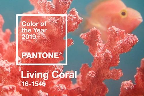 """Pantone 2019 Rengi: """"Living Coral"""""""