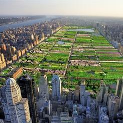 Erdem Mimarlar Central Park Yenileme Yarışmasında Finalde