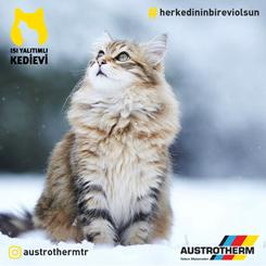 Türkiye'nin İlk Isı Yalıtımlı Kedi Evi