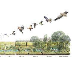Alexander von Humboldt ve Ekoloji Mirası