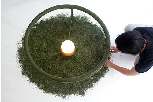 Meyve Kabuklarından Mobilyaya Uzanan Tasarımlar
