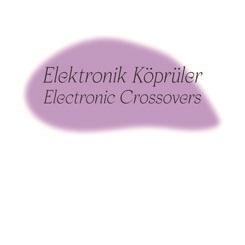 """""""Elektronik Köprüler"""" Konuşma ve Performans Serisi"""