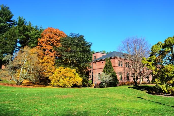 Arnold Arboretum, Harvard University, bahçesinden, Cambridge, MA.