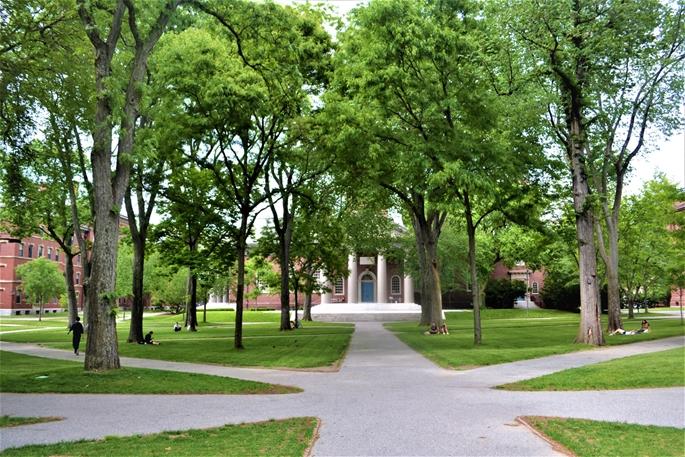 """Harvard Yard, COVID-19 nedeniyle hayata geri dönüş sürecinde, """"fiziksel ve sosyal mesafeli"""", Cambridge, MA, 9 Haziran 2020."""