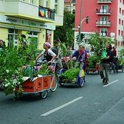 Toplum Tabanlı Hareket, Fikir ve Mekan: Topluluk Bahçeleri