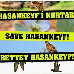 Hasankeyf 'UNESCO Dünya Miras Alanı' İlan Edilsin!