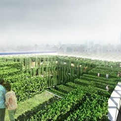 Bir Gereklilik Olarak Ekolojik Tasarım