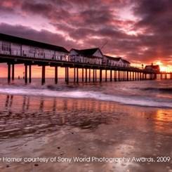Sony Dünya Fotoğraf Ödülleri 2011