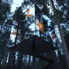 Orda, Bir Otel Var Ağaçta