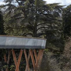 Westonbirt Arboretumu'na Yükseltilmiş Yürüyüş Yolu