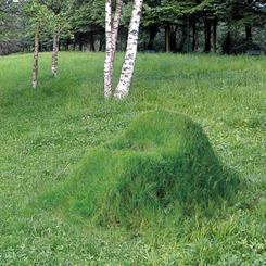 Bahçenizde Doğup Büyüyen Mobilya: TERRA!