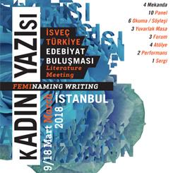 kADIN YAZIsı : İsveç - Türkiye Edebiyat Buluşması