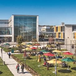 """Özyeğin Üniversitesi """"GreenMetric 2019 Sıralaması""""nda Dereceye Girdi"""