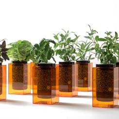Hidroponik Spacepot ile Bitkinizi Evde Kendiniz Yetiştirin!