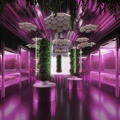 IKEA ve Tom Dixon Kent Bahçeciliğini Geliştirmek İçin İş Başında