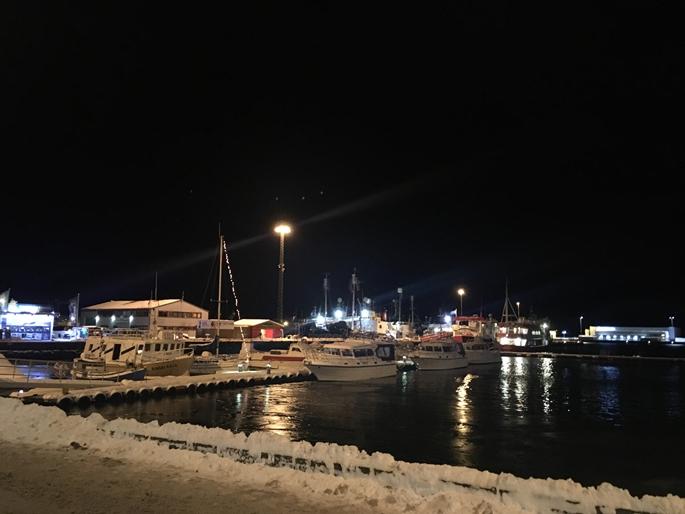Reykjavik Limanı, İzlanda