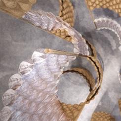 """Dassault Systèmes Yeni """"Yaşam İçin Tasarım"""" Eserini Londra Tasarım Müzesi'nde Tanıtacak"""