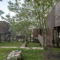 Yeşilin İçinde Kaybolan Bir Otel