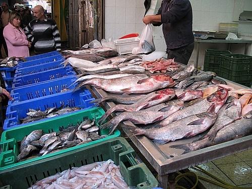 Akka'da balık pazarı
