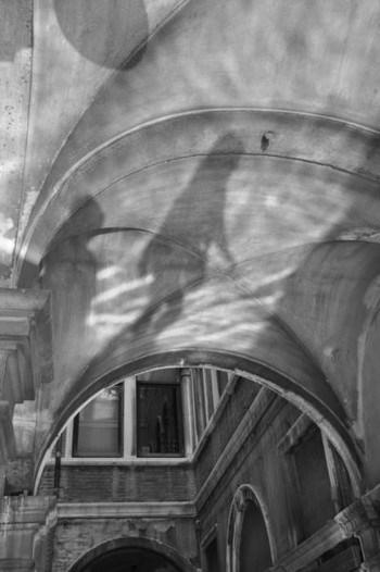 Mirko Gregolin / Shadow in procuratie nouve