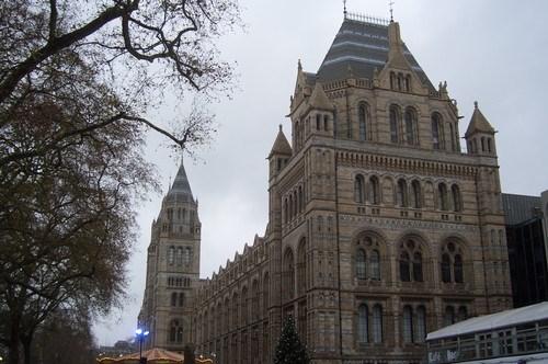 İngiliz Doğa Tarihi Müzesi