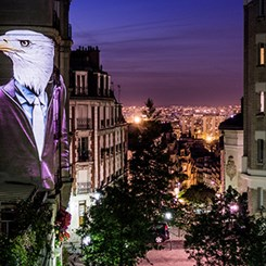 Paris Sokaklarında Safari